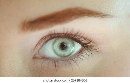 Female eye close up, macro image