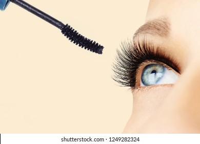 Female eye with extreme long eyelashes and brush of mascara. Make-up, cosmetics, beauty. Close up, macro