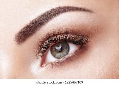 21925b3abc8 Female Eye with Extreme Long False Eyelashes. Eyelash Extensions. Makeup,  Cosmetics, Beauty