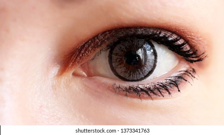 d4a2a078cf Eye Contact Images, Stock Photos & Vectors | Shutterstock