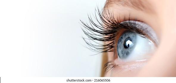 Weibliches Auge mit langen Wimpern, Nahaufnahme