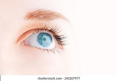 Female eye with long eyelashes looking up close up