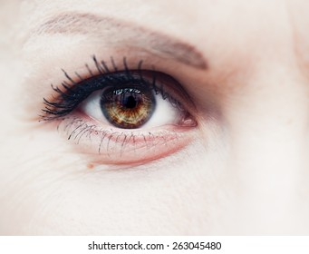 Female Eye In Macro