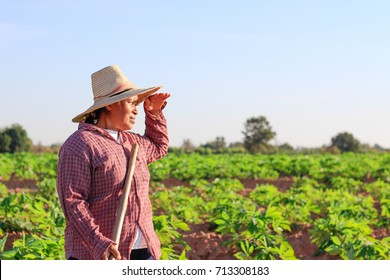 Female farmer. agriculture and cultivation concept.