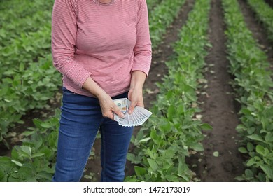 Female farmer counting dollar banknote in green cultivated soy bean field