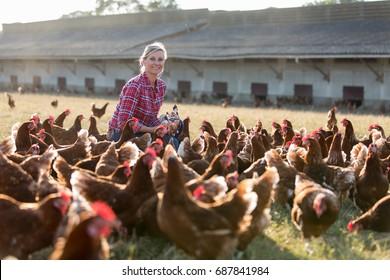 female farmer in farm with chicken