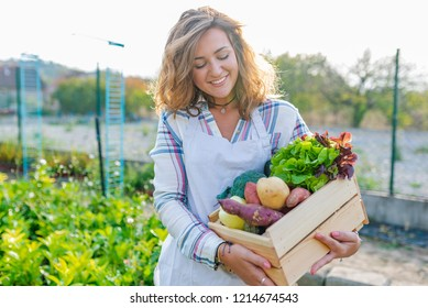 Female farmer holding wooden box with vegetables in field. Woman is holding wooden crate full of vegetables in garden. Harvest season in organic farm. Carrot, potato, eggplant,  tomato in wooden box