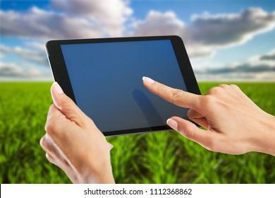 Female farmer using tablet computer