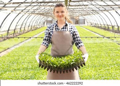 Female farmer working in large greenhouse