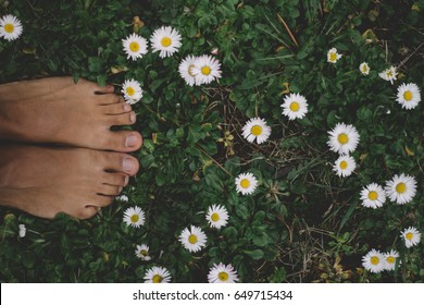 Female feet in the grass between daisies