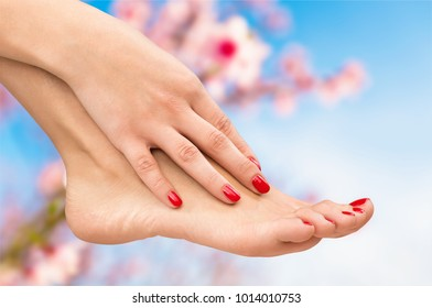 Female feet with hands