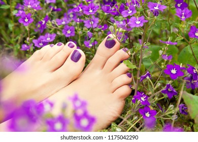 Female feet on a flower meadow. Poster for spa salons.