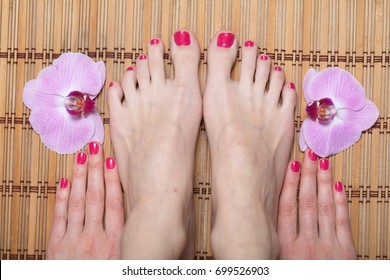 Female feet red pedicure nails Orchid flower