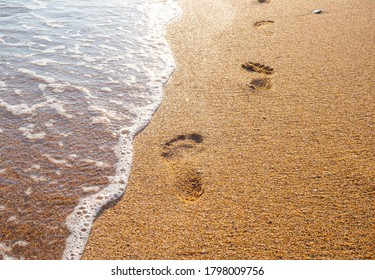 female footprints on wet sand at the water's edge by the sea. natural background, copy space