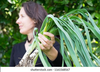 Female gardener holding harvest of muddy organic vegetables leeks, looking away