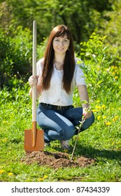 female gardener setting tree outdoor in spring