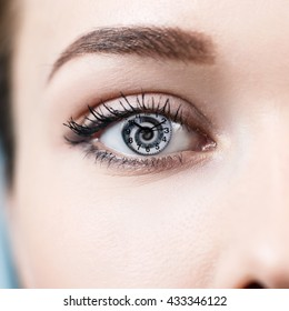 Female gray eye with hypnosis spiral inside