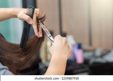 Female hair cutting by hairdresser at salon