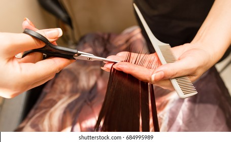 Female haircut with scissors in the beauty salon