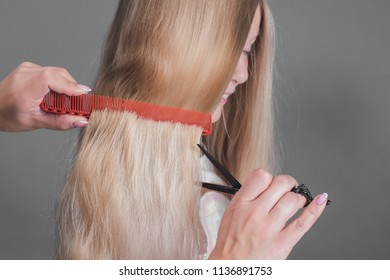 Female hairdresser hold in hand between fingers lock of blonde hair, comb and scissors closeup. Image of hairdresser trimming ends of blonde hair Keratin restoration, latest trend, fresh idea, haircut