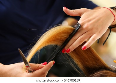 Female hairdresser hold in hand between fingers lock of blonde hair, comb and scissors closeup. Keratin restoration, latest trend, fresh idea, haircut picking, shorten tips, instrument store concept