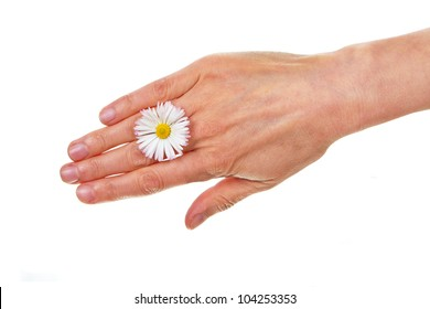 Female hand with daisy blossom isolated on white