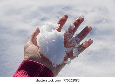 female hand with a handful of fresh fallen snow, against snowy background