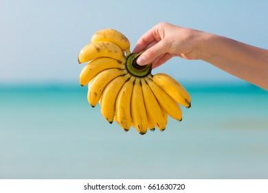 Female hand holding bananas on blue sea background