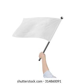 Female hand holding blank white flag, isolated on white background.