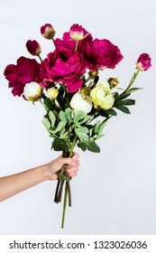Female hand is holding a bouquet of peonies