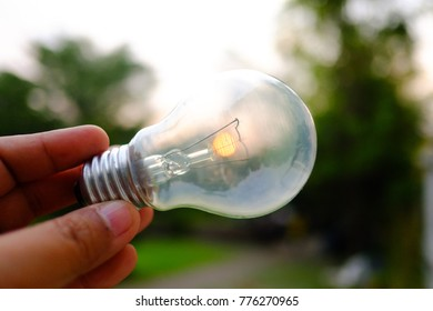 Female hand holding a light bulb with silhouette sunlight and blur green nature at the park,solar power concept