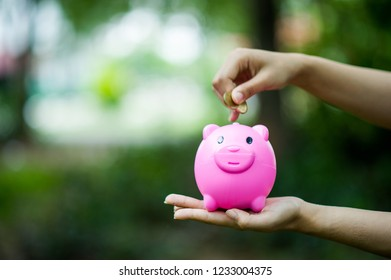 Female hand holding pink piggy bank, piggy bank and happy with savings. And copy space
