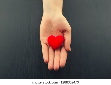 Female hand holding small red heart