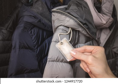 Female hand holding a small transparent plastic bag with winter jacket's filling (down) sample. Choosing qualitative filling for winter clothes.