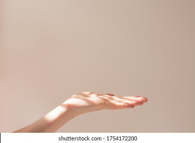 Female hand holds copy space and some object on a white background with beautiful shadows. Layout and frame in the sun