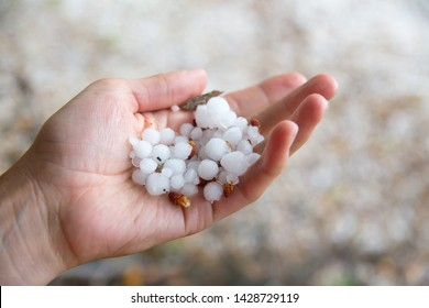 Female hand holds hailstones. Summer hail in the hand of a woman. Large hailstones in the hand of man. Hail hand. keeps the weather.