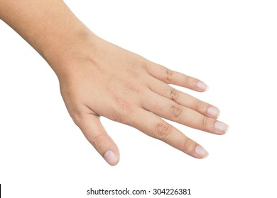 Female hand isolated on a white background