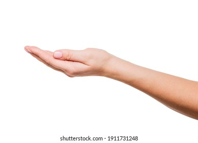 Female hand on a white background. A beautiful womans open hand isolated on white background. Palm up.
