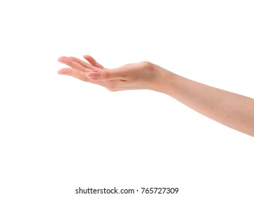 Female hand open isolated close up high quality resolution photo