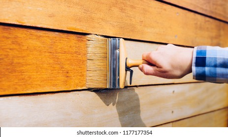 Female hand painting wooden wall with a brush- painting woodwork outside