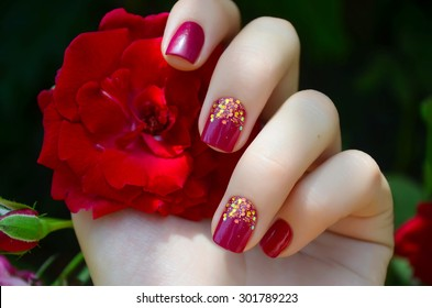 Female hand with pink manicure holding red rose.