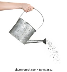 Female hand pouring water from metal watering can, isolated on white
