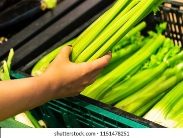 The female hand takes  fresh vegetables  in a supermarket close-up. woman choosing yellow and celerys in store. Holds with a hand celery