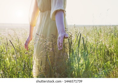 female hand touching grass enjoying nature alone, sunset light, hot sunny summer day