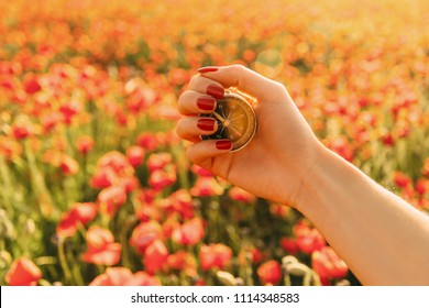 Female hand with travel compass on background of red poppies field in summer, point of view.