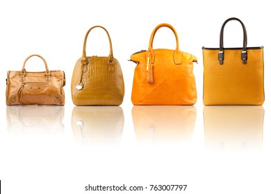 female handbags collection on reflected surface isolated on white background.Front view.