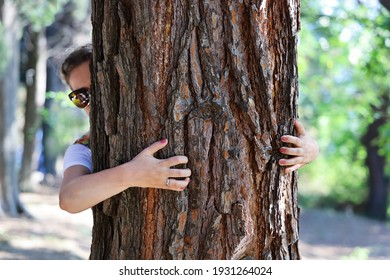 Female hands embrace tree, and her face looks from behind him, summer sunny day close-up in park