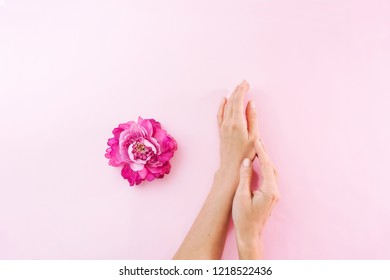 Female hands and flowers on a pink background. Skin and hand care. Moisturizing and eliminating the dryness of the hands skin
