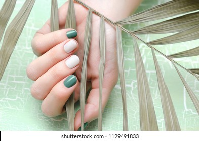 Female hands with green and white nail design.