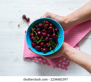 Female hands hold a blue bowl with ripe sweet cherry